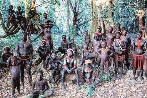 Image result for sentinelese tribes
