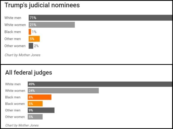 An All White Judicial